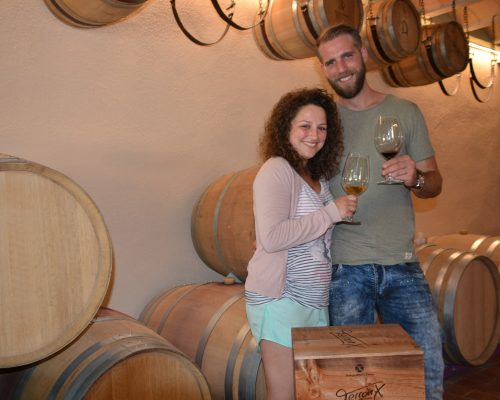 VISIT THE WINERY AND WINE TASTING OF 1 WINE
